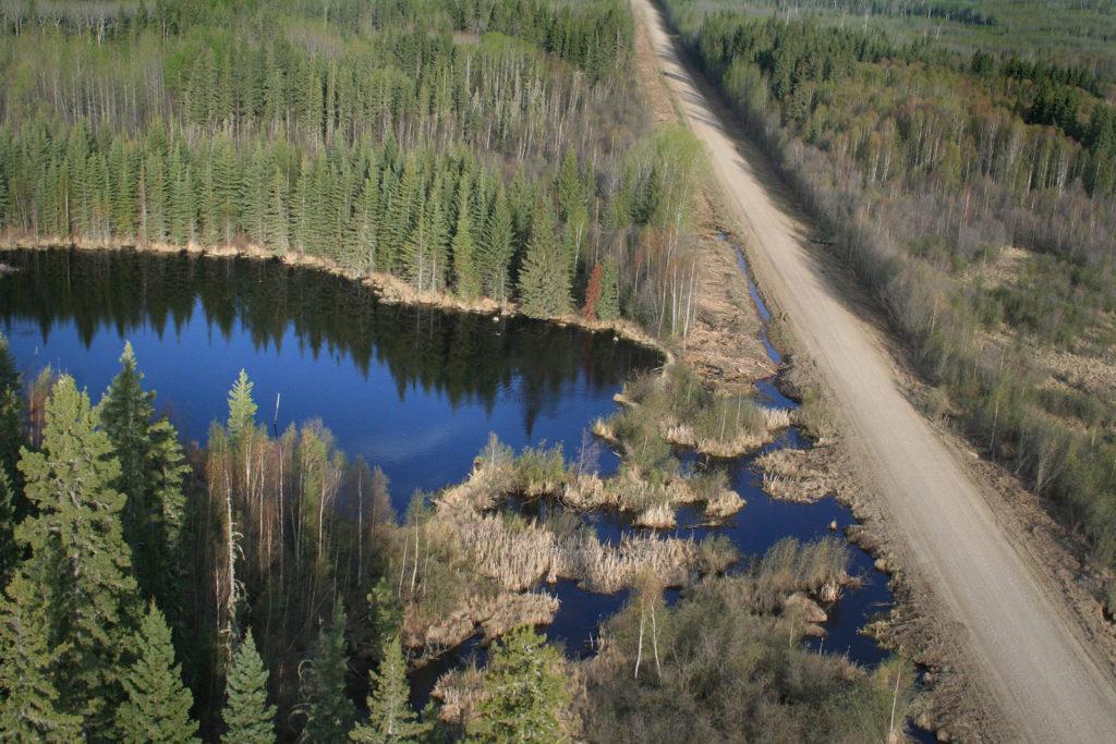 Boreal road blocks water flow.